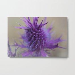 Purple Explosion Metal Print
