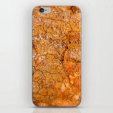 Decay 3 iPhone & iPod Skin