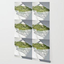 Leaf Light III Wallpaper