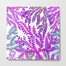 Violet sea corals. Metal Print
