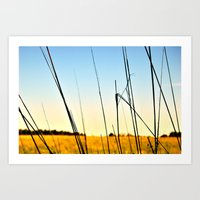Prairie I Art Print