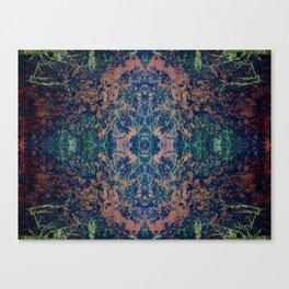 Ancient Rug Canvas Print