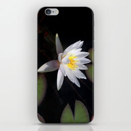 The white nymphaea iPhone Skin