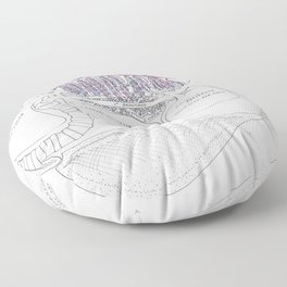 Avian Respiratory System, lateral view Floor Pillow