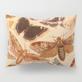 Vintage insects 1 Pillow Sham