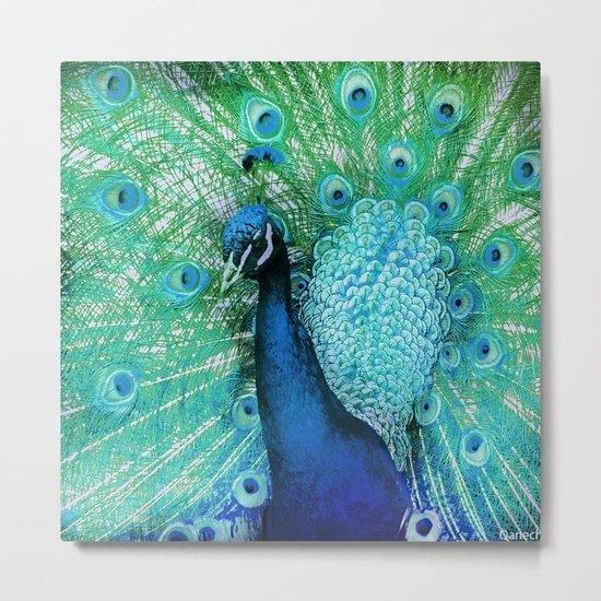 Peacock 2 Metal Print