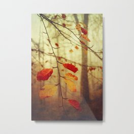 Colourful Autumn Leaves Metal Print