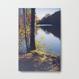 Solitude Lake Metal Print