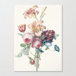 A Bouquet - Vintage Botanical Print Canvas Print