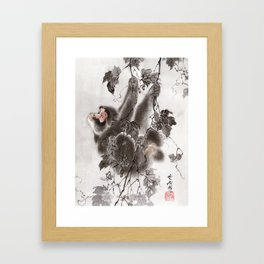 Monkey Hanging from Grapevines Framed Art Print