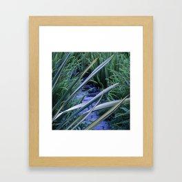 Tropical Leaf Swords Protecting Secret Pathway Framed Art Print
