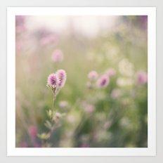Dreamy summer meadow Art Print