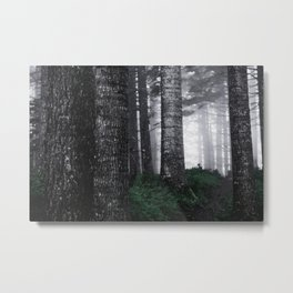 Perfect PNW Forest Metal Print