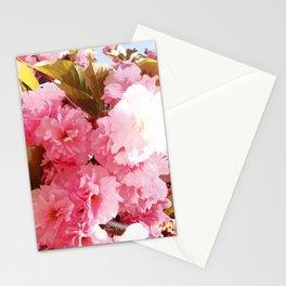 Pink Sorbet Stationery Cards