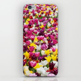 Collection of different tulips in Holland iPhone Skin