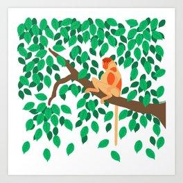 Proboscis monkey Art Print