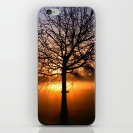 Louisiana Sunrise iPhone Skin