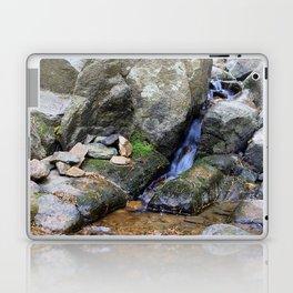 Upper Maxwell Falls in Autumn Laptop & iPad Skin