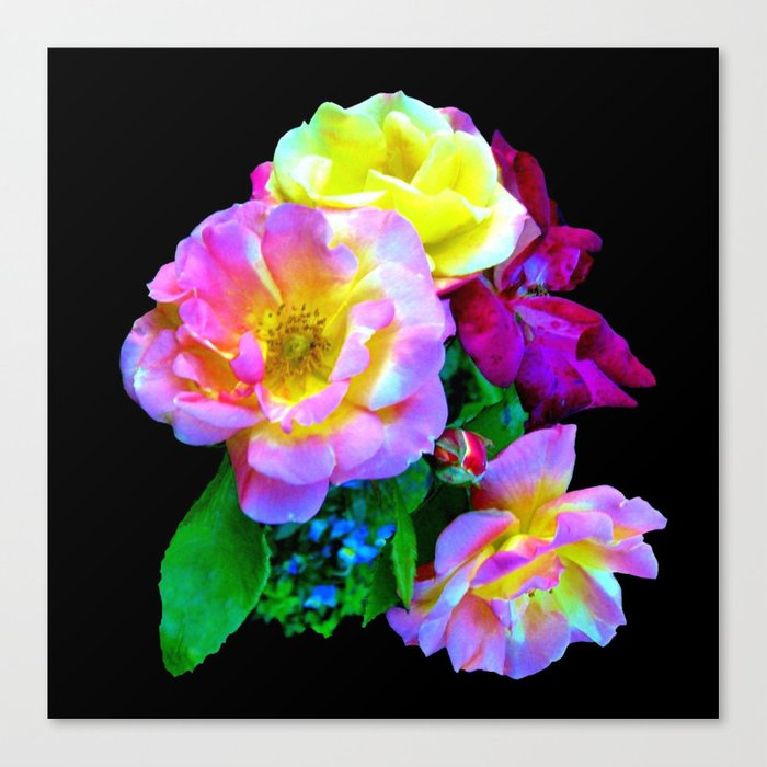 Rosa Yellow Roses on Black Canvas Print