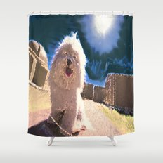 Coton de Tulear Shower Curtain