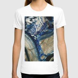Earthly Pleasures II T-shirt