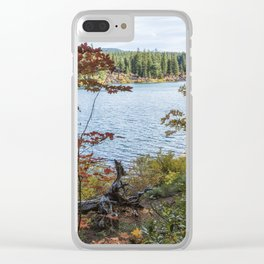 Splashes of Color Around Clear Lake Clear iPhone Case