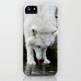 Thirsty Wolf Quenching His Thirst iPhone Case