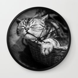 sleepy cat Wall Clock