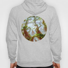 Wooded Foothills Hoody