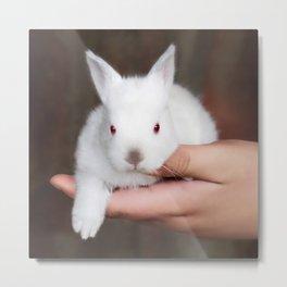 Bunny in hand Metal Print