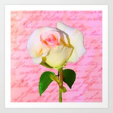 Rose Unfolding Art Print