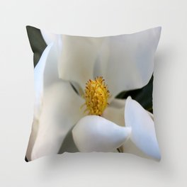 Sharyn Throw Pillow