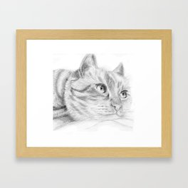 Cat sketch Framed Art Print