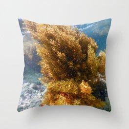 Forest of Seaweed, Seaweed Underwater, Underwater Scene Throw Pillow