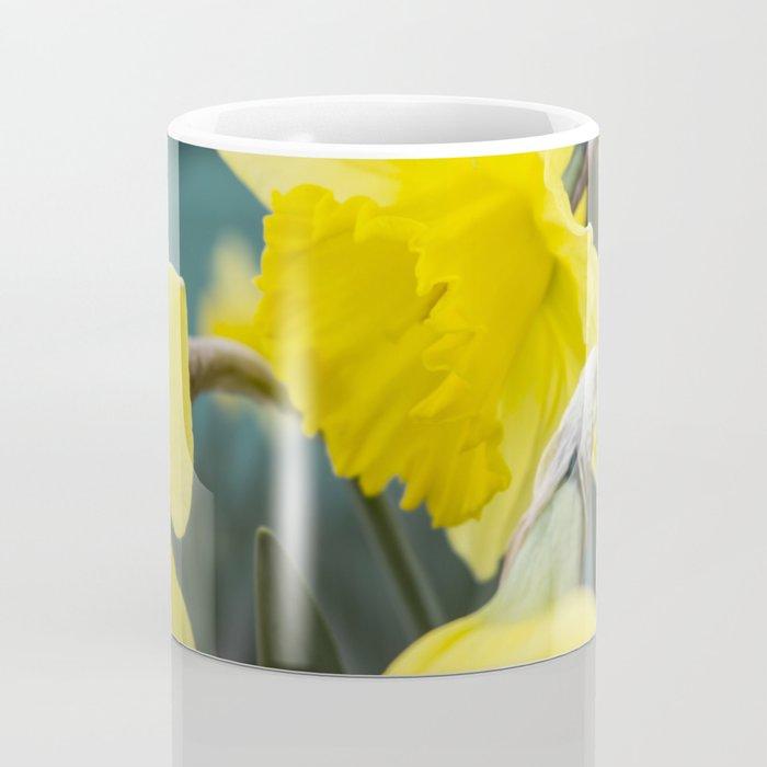 Spring field flowers landscape with bright orange flowers of spring narcissus under sunset light. Se Coffee Mug