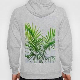 Little palm tree Hoody