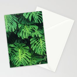 Monstera leaf jungle pattern - Philodendron plant leaves background Stationery Cards