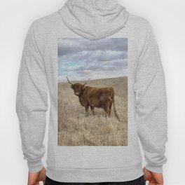 Highland Cow in Starland County, Alberta Hoody