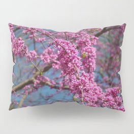 Blue skies and redbud in spring Pillow Sham