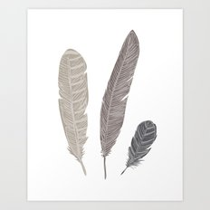 brown feathers Art Print