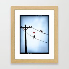 Bird In Love Framed Art Print