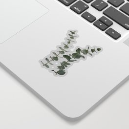 Eucalyptus Branches I Sticker