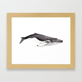 Humpback whale for whale lovers Framed Art Print