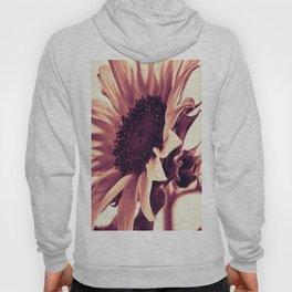 Rose Pink Sunflower Hoody