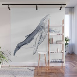 Baby humpback whale for children kid baby Wall Mural