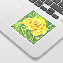Yellow Rose Watercolor Painting Sticker