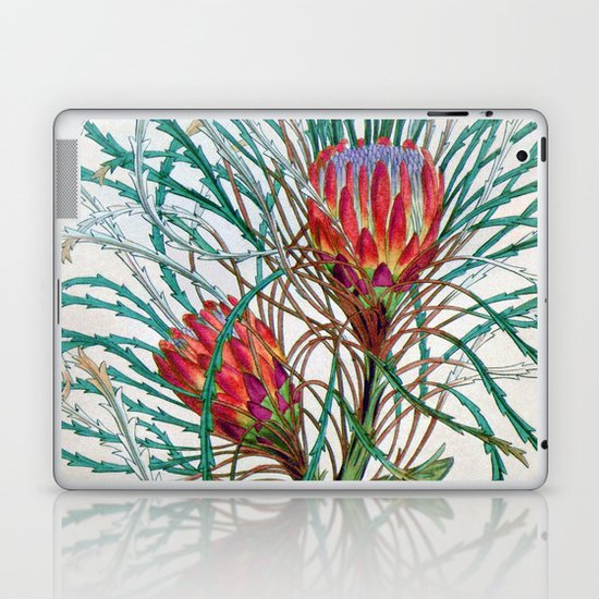 A Protea flower Laptop & iPad Skin