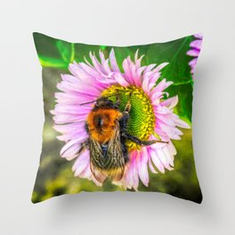 Bumblebee on a Daisy Throw Pillow