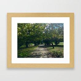 Porto Park Framed Art Print