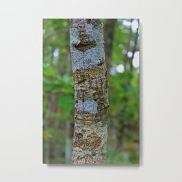 In the Midst of Six Mile Metal Print